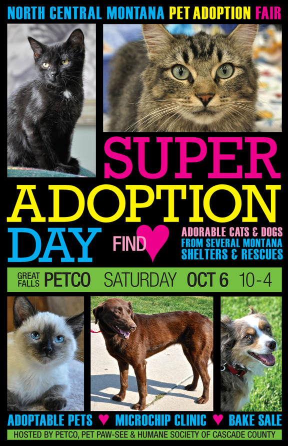 North Central Montana Super Adoption Day City Of Great Falls Montana